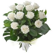 12 White roses Blooms of Yarrawonga